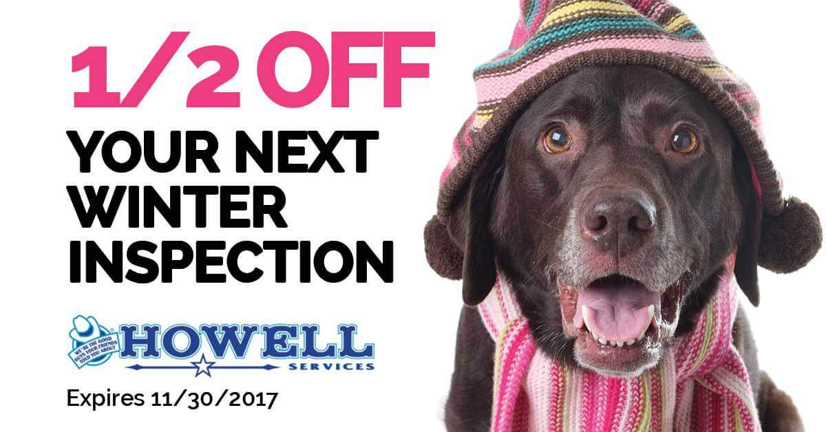 winter inspection coupon